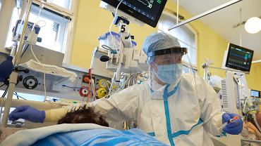 Rezydent z oddziału covidowego: 'Rurka 7.5, midanium, propofol, fentanyl' - to dla wielu będzie ostatnie zdanie, jakie usłyszą w życiu