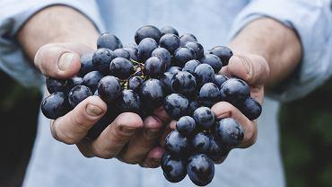 winogrona (zdjęcie ilustracyjne)