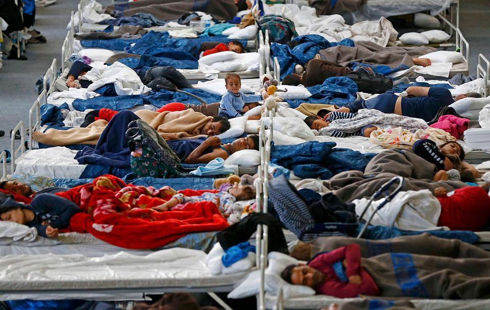 Zdjęcie numer 2 w galerii - Dobra decyzja o uchodźcach