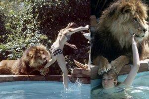Te zdjęcia wywołują ciarki na plecach, ale i zachwycają. Nastolatką, którą połączyła niezwykła przyjaźń z afrykańskim lwem o imieniu Neil, była Melanie Griffith. Zdjęcia pochodzą z 1971 roku, przyszła aktorka miała wtedy 14 lat. Historia tej przyjaźni jest równie niesamowita, co zdjęcia.