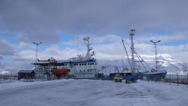 Zdjęcie numer 0 w galerii - Przystanek Hornsund 2014. Wyprawa do Polskiej Stacji Polarnej na Spitsbergenie