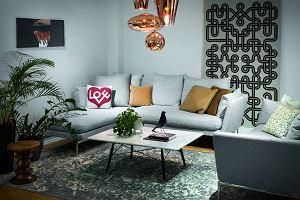 Moda na szare sofy. Jaką wybrać i z czym łączyć?