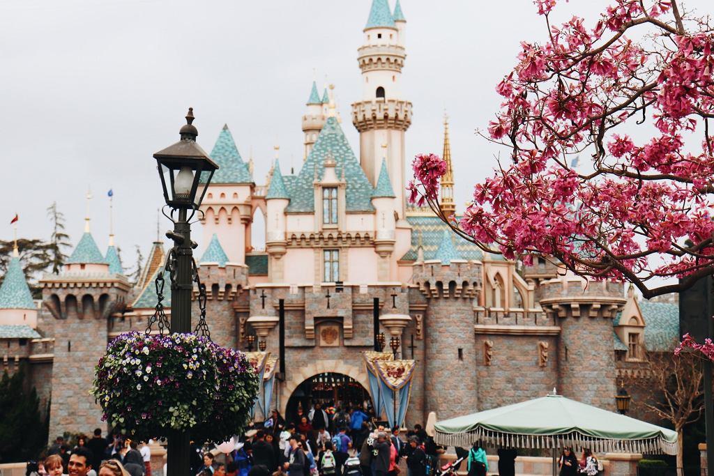 Disneyland w Tokio zostanie tymczasowo zamknięty w obawie przed koronawirusem (zdjęcie ilustracyjne)