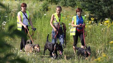 Wolontariusze białostockiego schroniska dla zwierząt