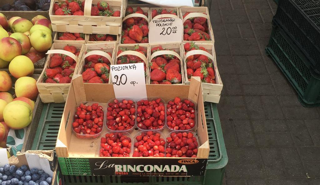 Polskie truskawki już są na bazarach - kiedy możemy się spodziewać wysypu owoców?
