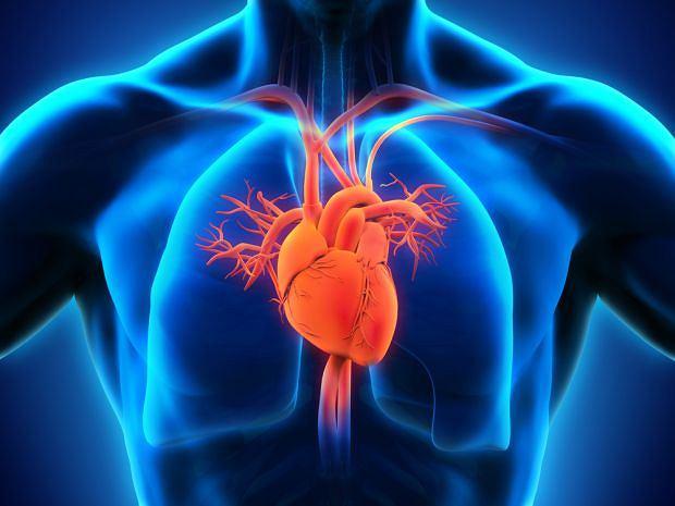 Dwunapływowa lewa komora to rodzaj wrodzonej wady serca. Mimo że schorzenie jest trudne w leczeniu to zazwyczaj jest ono bardzo skuteczne