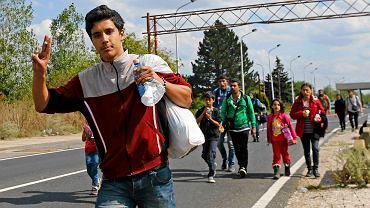 Skąd ta radość? Mężczyźnie udało się przekroczyć granicę między Węgrami a Austrią