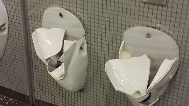 Niemieccy kibole zdemolowali łazienki na Narodowym