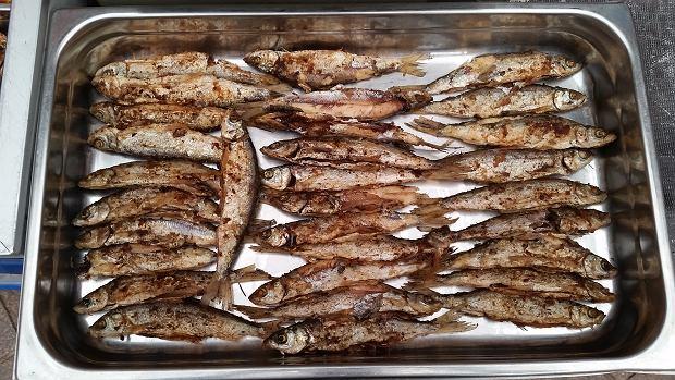 Pan Sandacz, najlepszy sprzedawca ryb słodkowodnych
