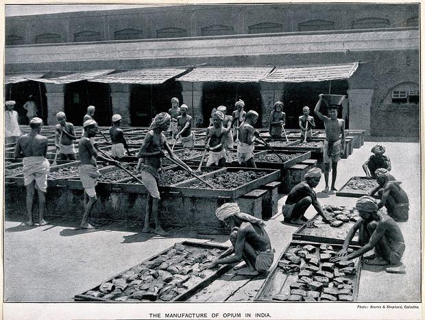 Hinduscy robotnicy mieszający opium na jednym zpodwórek Kalkuty (fotografia zok. 1900 roku)