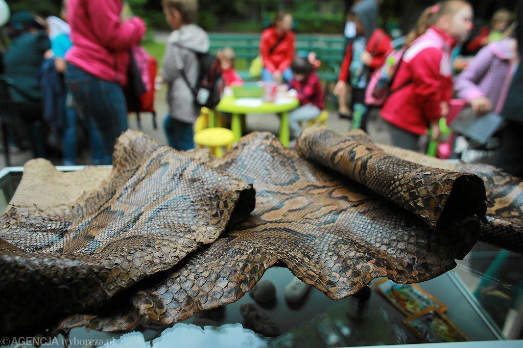 Zoo w Łodzi. Prezentacja nielegalnych pamiątek z wakacji