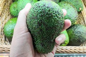 Awokado - 220 zdrowych kilokalorii. Awokado właściwości i wartość odżywcza