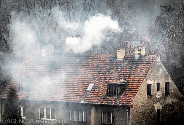 33,6 tys. osób zmarło w Polsce z powodu COVID-19. A od smogu każdego roku umiera ponad 46 tys.