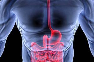 Gastroskopia. Jak się przygotować do gastroskopii?