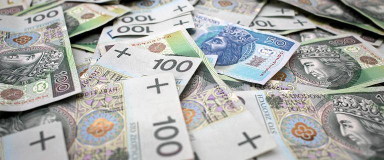 Senator KO zaniepokojony nowymi banknotami. NBP wyjaśnia zagadkę z seriami
