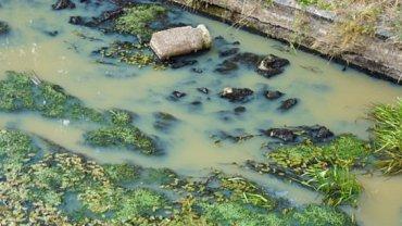 Zanieczyszczona rzeka.