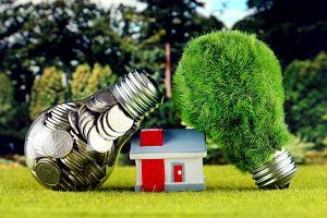 Ekologiczne i mądrzejsze podatki - płać więcej za większe auto, większy dom, towary zużywające środowisko