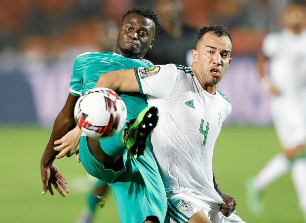 Algieria mistrzem Afryki. Zdecydował przypadkowy gol
