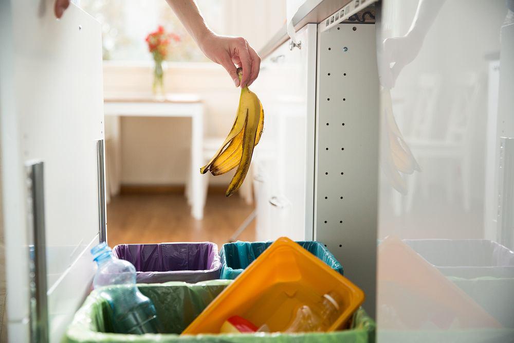 Jak segregować śmieci? Sprawdź, jak robić to dobrze. Zdjęcie ilustracyjne