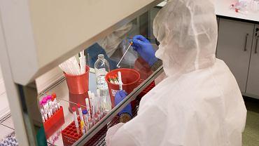 Testowanie próbek na obecność koronawirusa