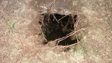 Otwór w ziemi prowadzi do krypty sprzed ponad 100 lat