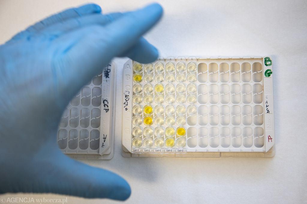 Kaseta z testami na obecność koronawirusa