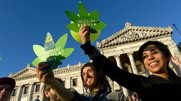 Urugwaj w pełni zalegalizował marihuanę. Jako pierwszy kraj na świecie