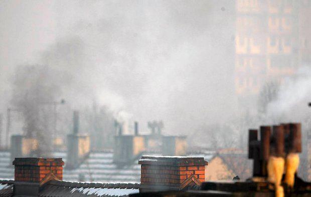 Zdjęcie numer 3 w galerii - Powietrze w Polsce nie będzie już zatruwać smogiem? Wszystko zależy od jednego podpisu