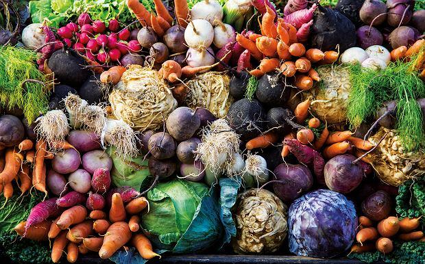 Międzynarodowe Targi Żywności i Produktów ekologicznych to nowe wydarzenie dla osób zainteresowanych ekologiczną żywnością