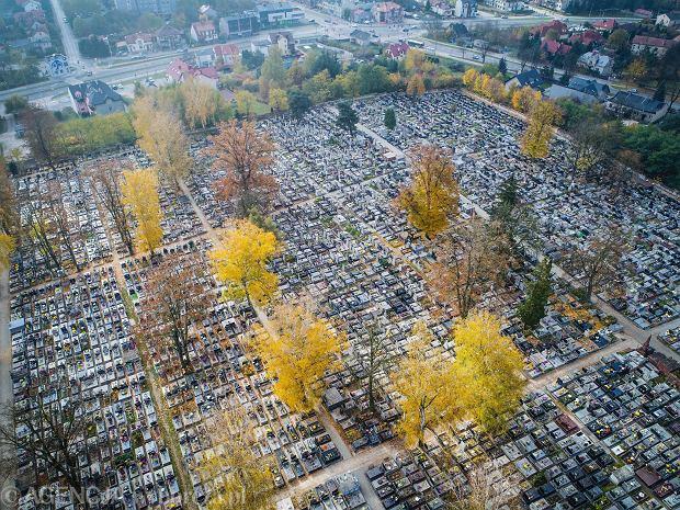 Zdjęcie numer 0 w galerii - Wszystkich Świętych 2020 w Kielcach. Pustki wokół cmentarzy [ZDJĘCIA Z DRONA]