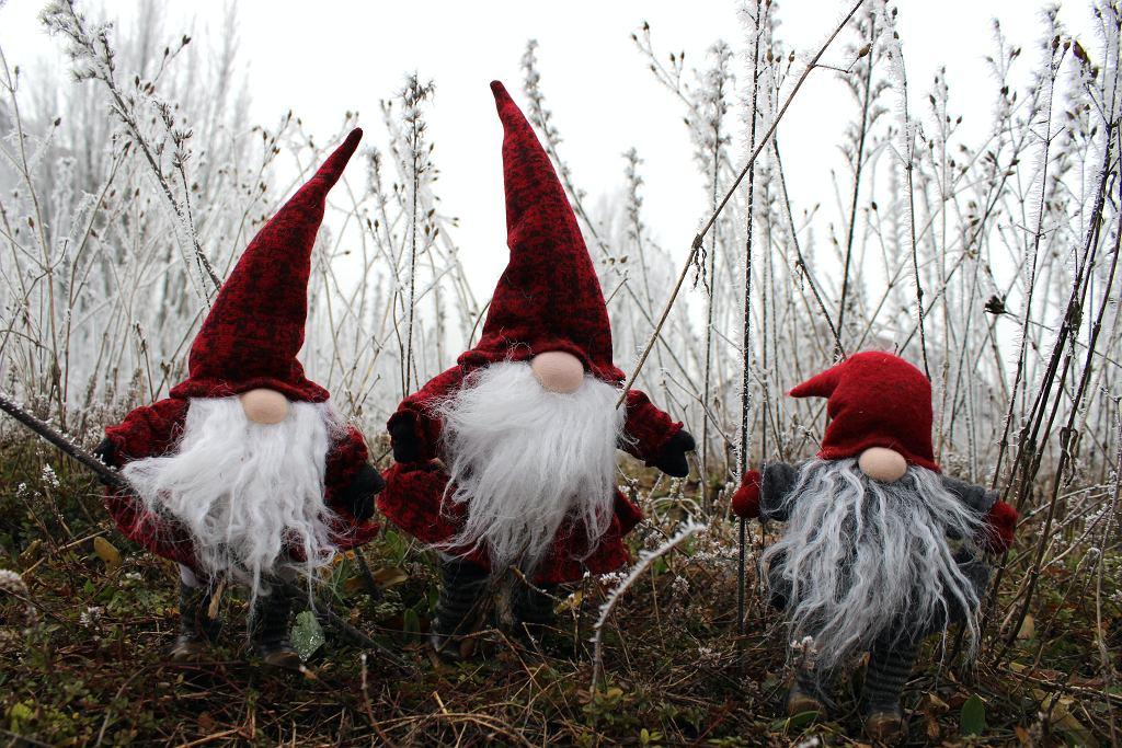 Skrzaty świąteczne - jak je zrobić?