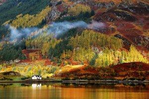 Angielska prowincja - dla fanów zamków, wrzosowisk, pubów, jeleni i prawdziwej złotej jesieni