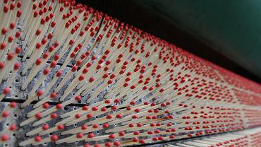Słynny producent zapałek zlikwidowany po 100 latach. To był ostatni zakład tego typu w Polsce