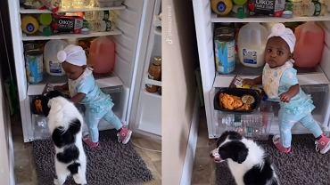 Dziecko i szczeniak zakradli się do lodówki. Tata nakrył ich na gorącym uczynku