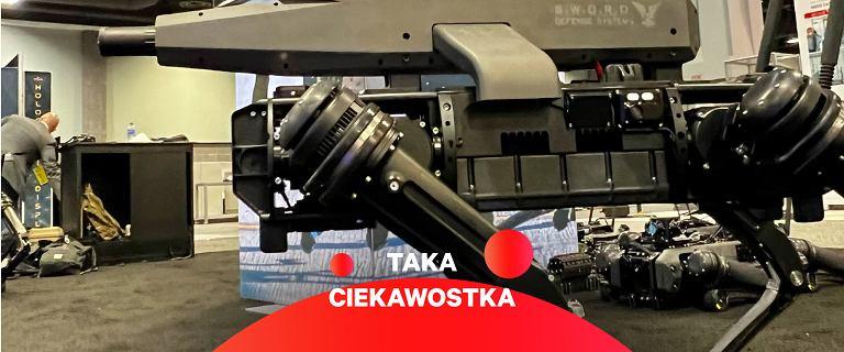 Uzbrojony robopies wywołuje strach wizją z Terminatora