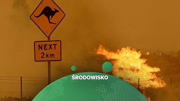 Pożary w Australii będą coraz poważniejszym problemem przez zmiany klimatu