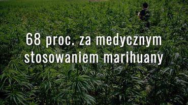 Sondaż dla Radia TOK FM, Wyborcza.pl i Fundacji Krok Po Kroku