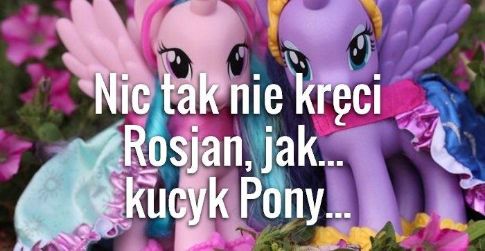Kucyk Pony