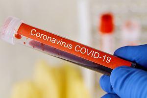Badanie krwi u dzieci pomoże zdiagnozować te, które są najbardziej zagrożone ciężkim przebiegiem COVID-19