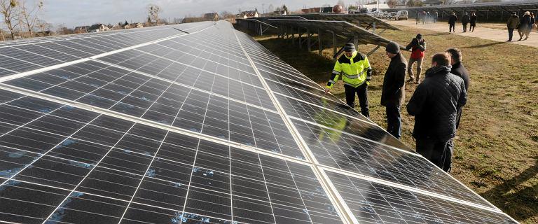 PGE chce pobić Energę. Zbuduje największą farmę solarną w Polsce