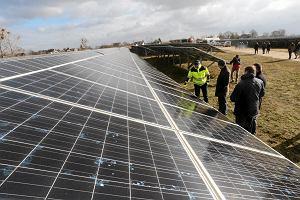 PGE chce pobić Energę. Zbuduje największą farmę solarną w Polsce - 16 tys. paneli słonecznych na 10 hektarach