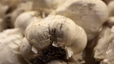 Allicyna to substancja, która powstaje przez uszkodzenie na przykład czosnku