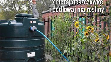 Nie musisz wydawać pieniędzy na wodę do podlewania ogrodu - wystarczy, że zainwestujesz w zbiornik na deszczówkę