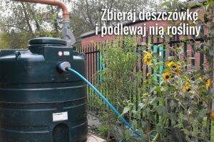 Jak tanio urządzić ogród? 21 sposobów na tani ogród