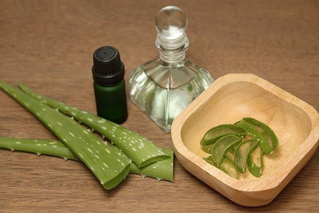 Do naturalnych substancji pobudzających układ immunologiczny należą m.in. echinacea oraz aloes