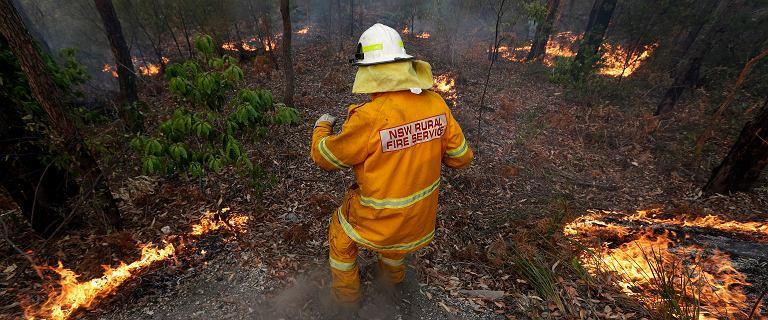 """Australia. Ogromny pożar w okolicach Sydney. """"Nie możemy go powstrzymać"""""""