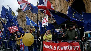 Przeciwnicy brexitu demonstrują przed siedzibą parlamentu w Londynie, 12 marca 2019 r.