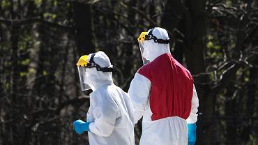 Koronawirus w Polsce. Ministerstwo podało nowe dane o zakażonych i ofiarach śmiertelnych