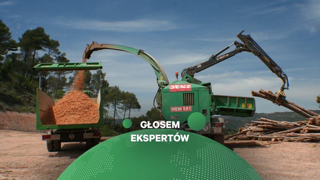 Produkcja pelletu drzewnego