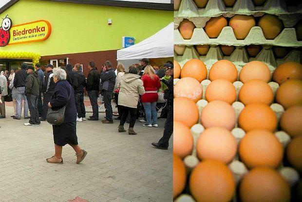Salmonella w jajkach z Biedronki